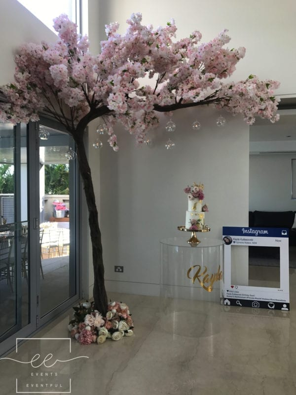 Cherry Blossom Tree Events By Eventful
